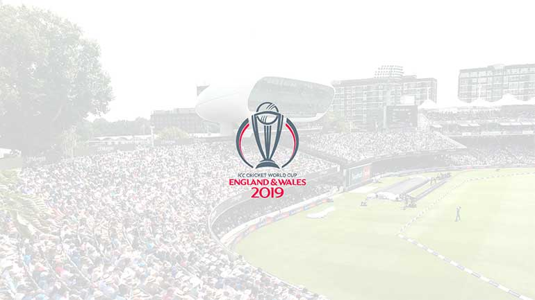 Focus On… the Cricket World Cup